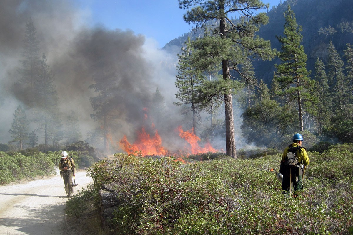 A firefighter stands in a brushy area with a lit drip torch, while another firefighter holding a hand tool walks down a gravel road. Nearby, flames from a prescribed fire put off dark smoke, obscuring a hillside.