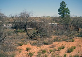 Open landscape as a result of removal of brush and mesquite trees near park buildings.