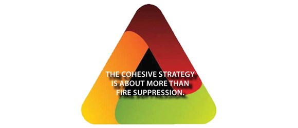 A messaging triangle presents the key message that the Cohesive Strategy is about more than fire suppression
