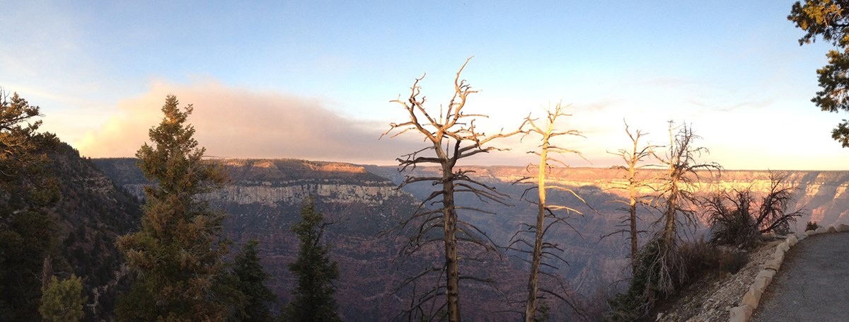 A collapsed smoke plume looms over a softly lit Grand Canyon.
