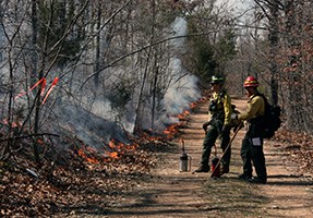 Two firefighters stand near the side of a dirt road with fire nearby.