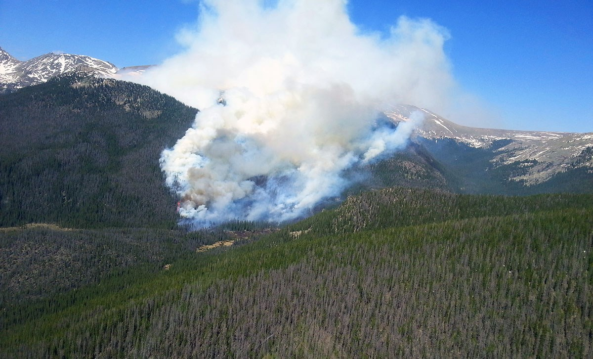 A large plume of smoke on the side of a mountain near an area with beetle-killed trees.