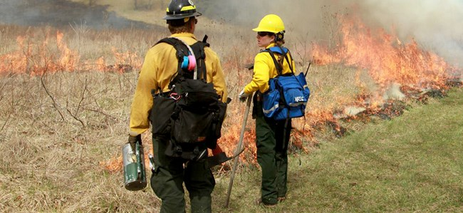 Firefighters wearing protective equipment stand along a fireline in a meadow.