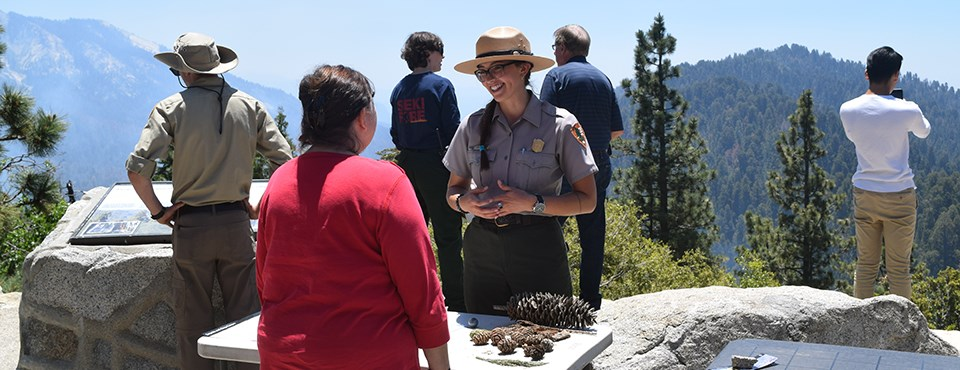 A ranger speaks to a visitor near a table with pine cones.