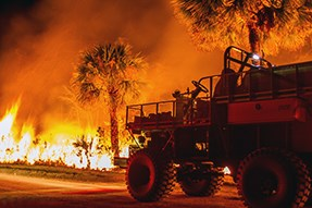 The glow of fire burning ground vegetation lights up the area to show a buggy and palm trees.