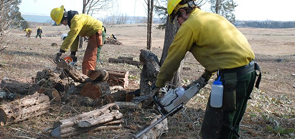 Two men in Nomex flame-resistant clothing and protective equipment use chainsaws to cut logs while other crew members work in the distance.