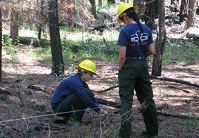 A fire ecologist takes a sample along a transect while another ecologist observes.