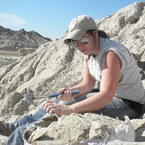 person digging fossils