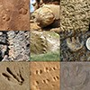 images of trace fossils