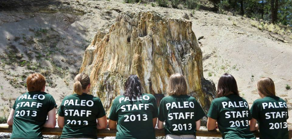 6 paleontology interns in matching shirts