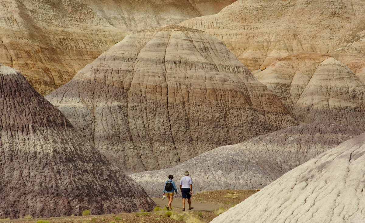 Visitors Enjoying the Blue Mesa Trail