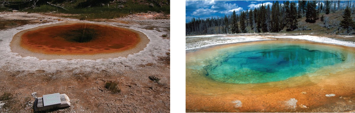 two different hydrothermal pools exhibiting different colors red and blue