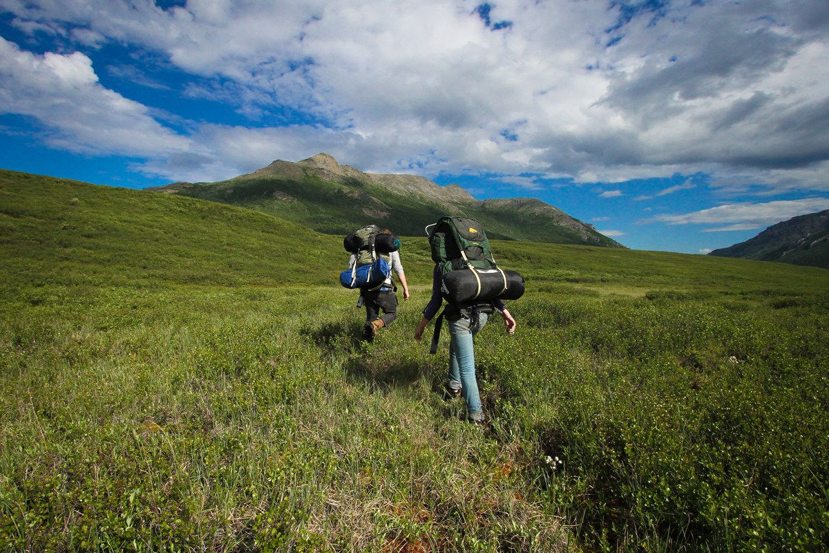 Two Backpackers in a Field at Denali National Park