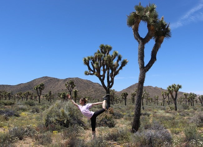 Woman practices yoga pose in desert