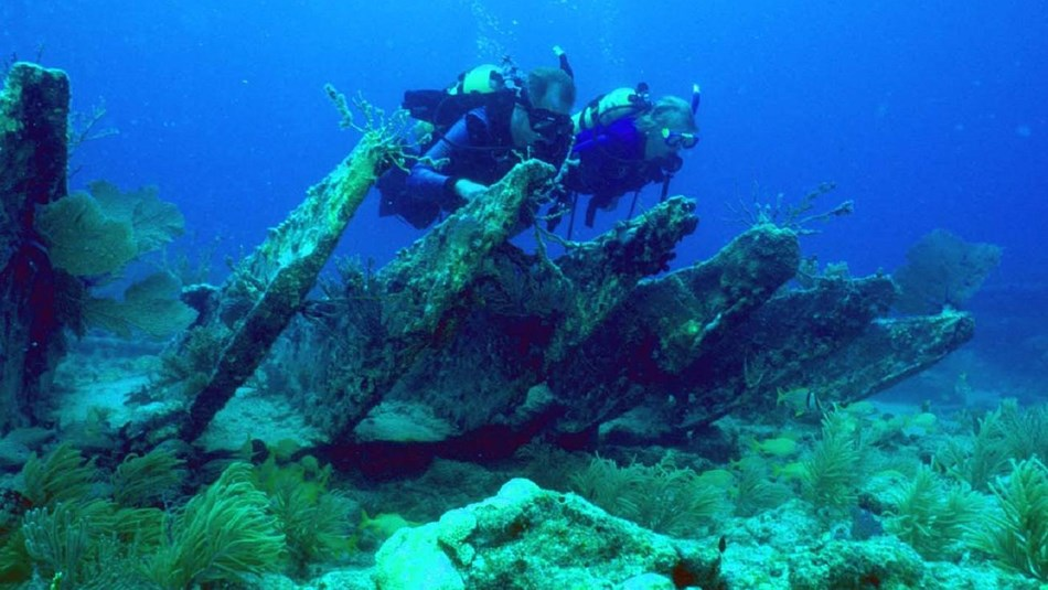 2 scuba divers researching an underwater ship