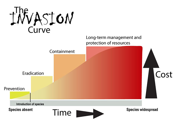 Graphic of the invasion curve of invasive species