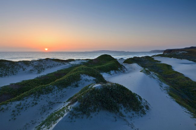 sun setting on a series of dunes with green plants on top of them