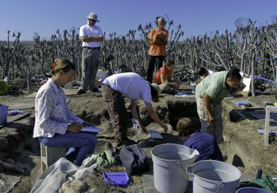 University students conducting research at Tule Creek Village site on San Nicolas Island