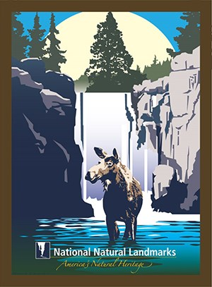 Graphic drawing of a moose standing in waterfall pool