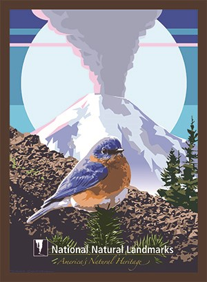 artwork of a blue bird with a volcano background