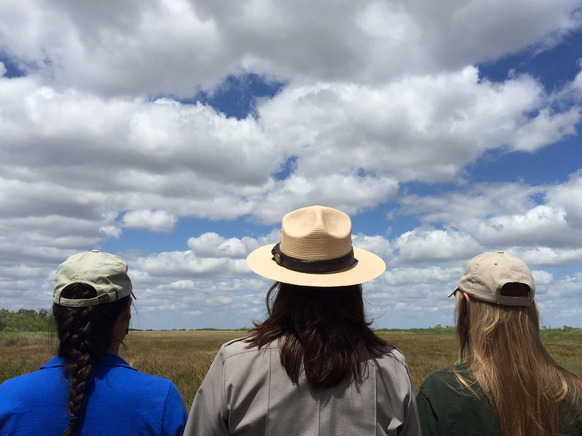 Back of rangers and volunteers looking out across a marsh