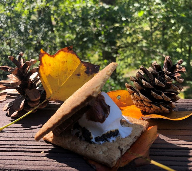 Smore on a table with leaves and pinecones