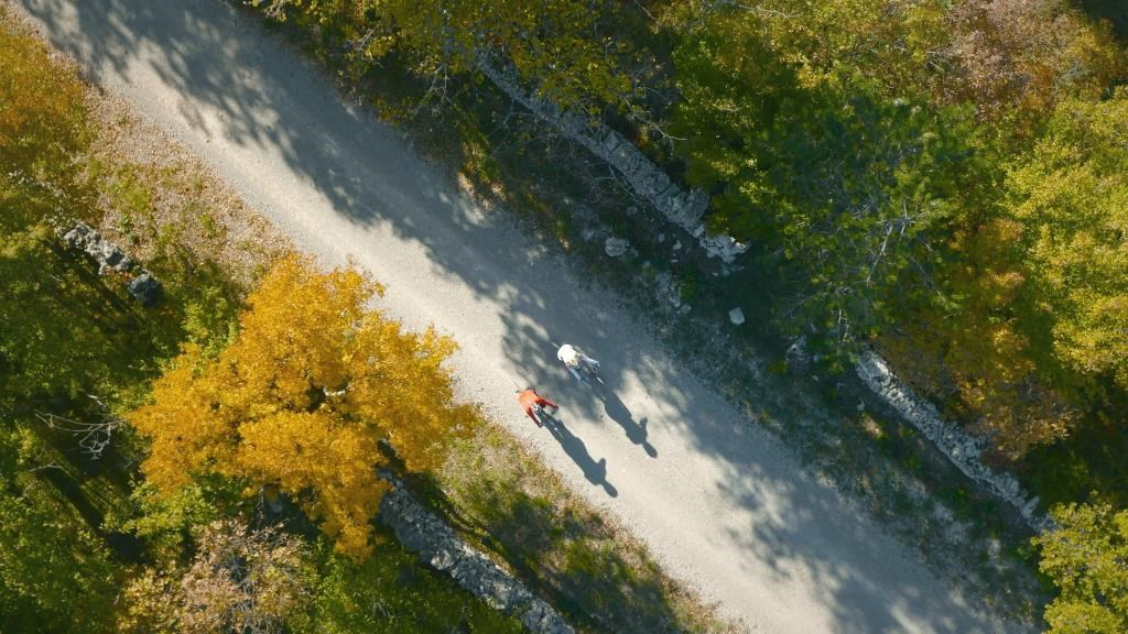 aerial view of two bicyclists on a paved trail