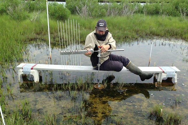 scientist testing the quality of water in a salt marsh