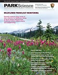 Cover of Park Science 33(1)—Winter 2016–2017. Park Science is a journal of the U.S. National Park Service dedicated to integrating research and resource management in the U.S. national parks