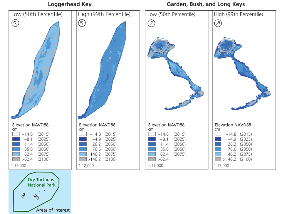 Four maps: 50th and 99th percentile maps for Loggerhead Key (left) and Garden, Bush, and Long Keys (right). Inset: Locator map showing the location of Loggerhead, Garden, Bush, and Long Keys at Dry Tortugas NP. Linked table gives legend rise thresholds.