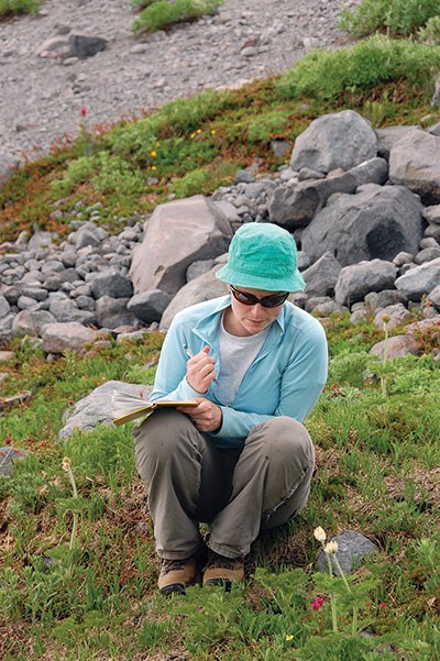 Graduate student Elli Theobald gathers phenological data on a weekly basis at Mount Rainier National Park during the summer months.