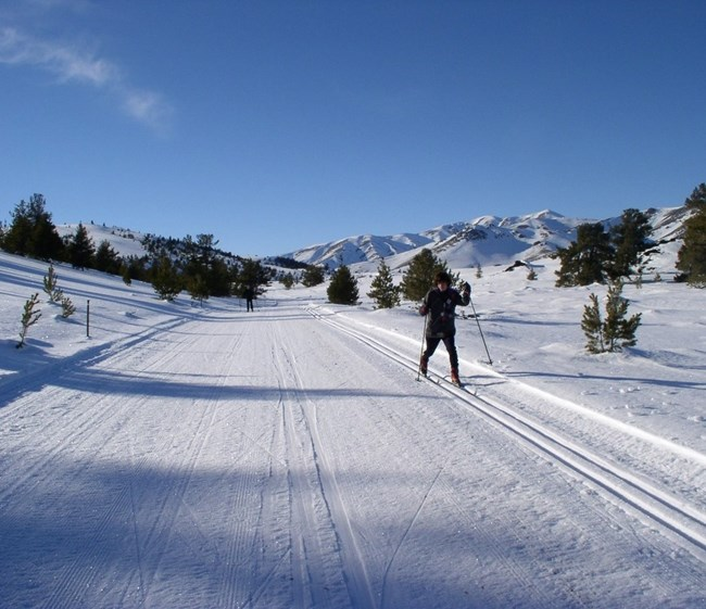 skiers along a groomed snow-covered trail with blue sky and mountains in the background