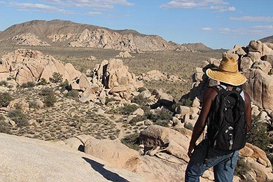 A hiker views a valley within Joshua Tree National Park.