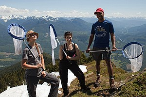 A team of butterfly researchers stand atop a mountain in North Cascades National Park.