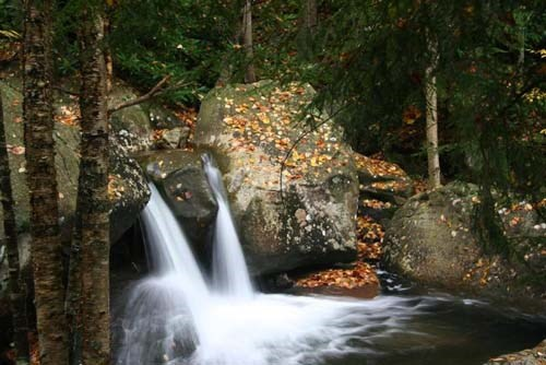Two small waterfalls flowing off leaf-covered boulders.