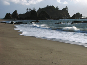 Ocean tide rolls to the shore at Olympic National Park, Washington