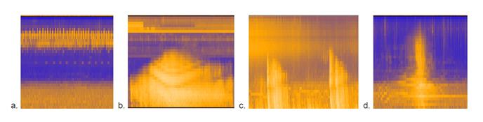 Four spectrograms show frequency, duration, and loudness of different sounds.
