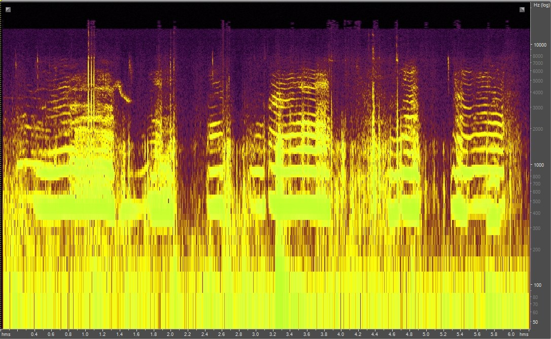 Spectrogram of a mother bear and cubs