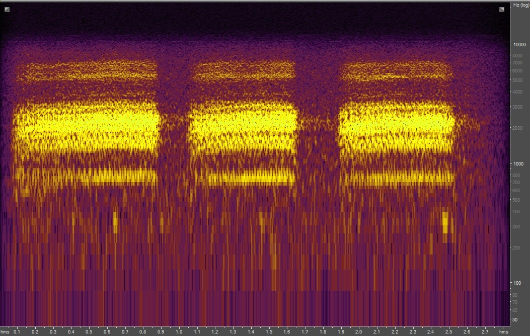 Spectrogram of Clark's Nutcracker
