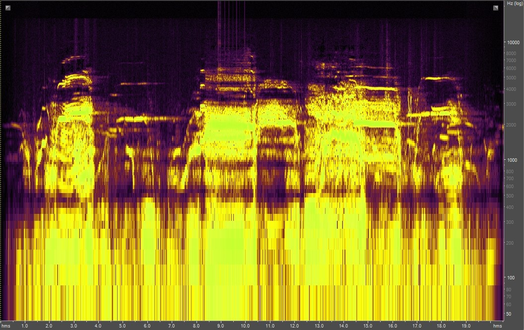 Spectrogram of bugling elk