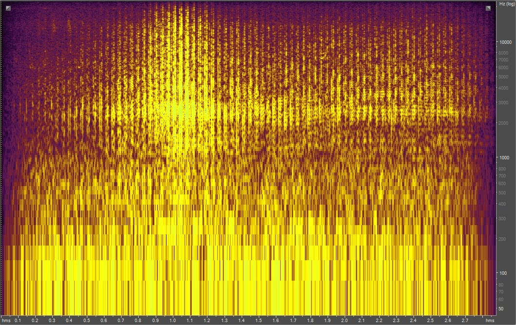 Spectrogram of a grasshopper