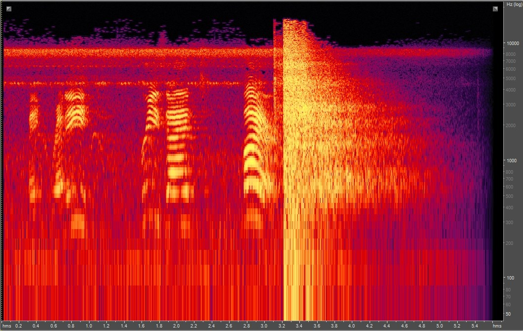 Spectrogram of musket fire