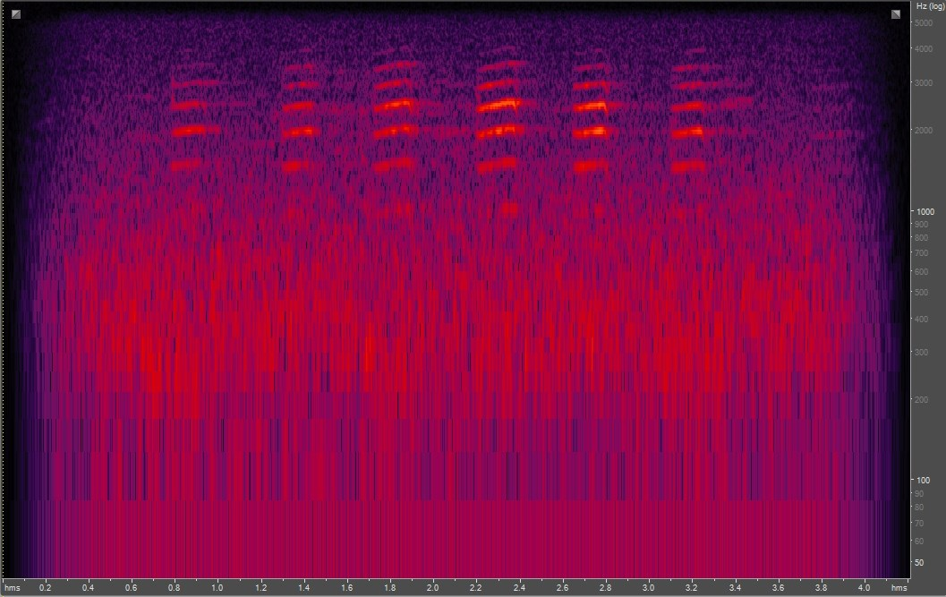 Spectrogram of red-breasted nuthatch
