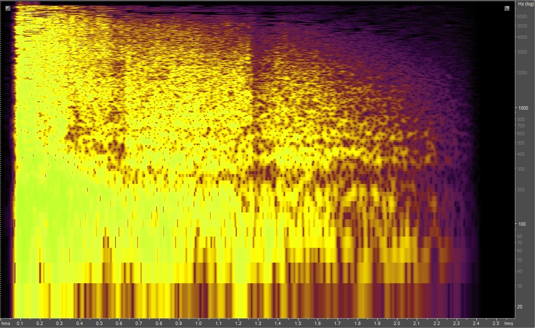 Spectrogram of cannon fire