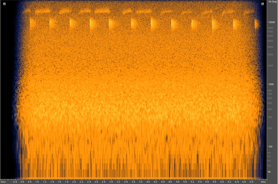 Spectrogram shows sound waves of a spotted bat's call