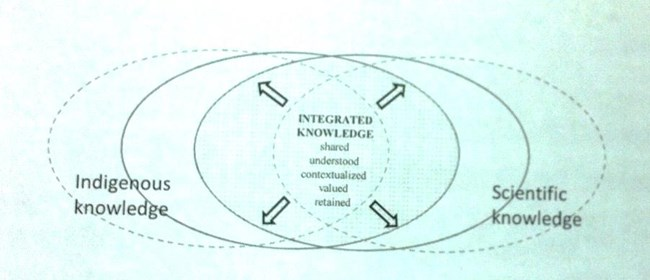 Knowledge chart