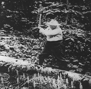 TR chopping wood