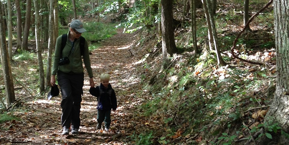 adult and child walk in woods