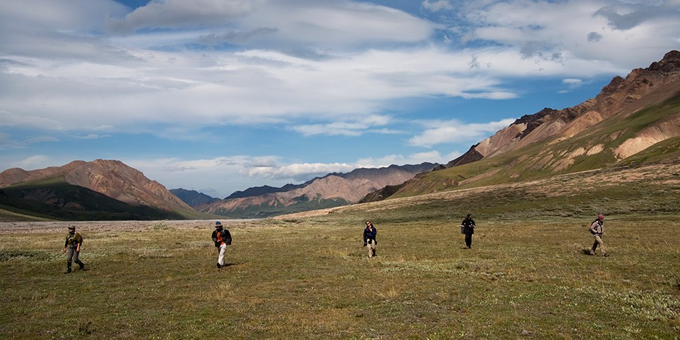Five people hike in vast open tundra with mountains in the distance