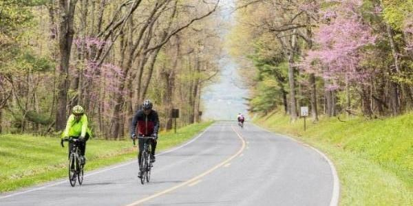 Bicyclists in Shenandoah National Park